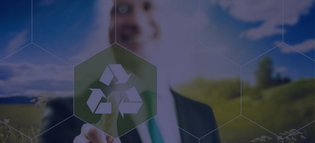 Системы управления обеспечением экологическойбезопасности